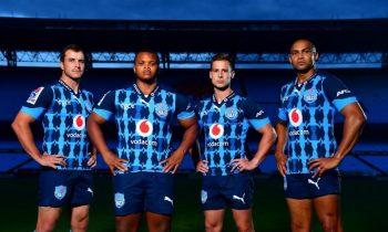 Los toros llevarán margaritas en las camisetas de Super Rugby 2020